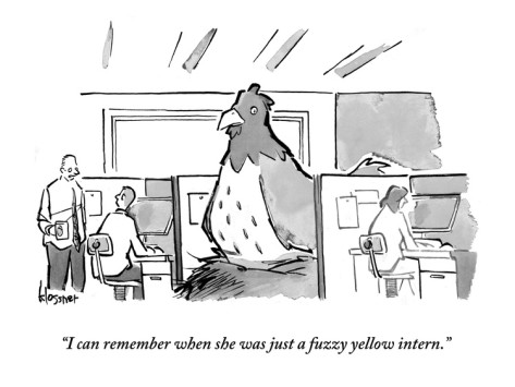 john-klossner-i-can-remember-when-she-was-just-a-fuzzy-yellow-intern-new-yorker-cartoon