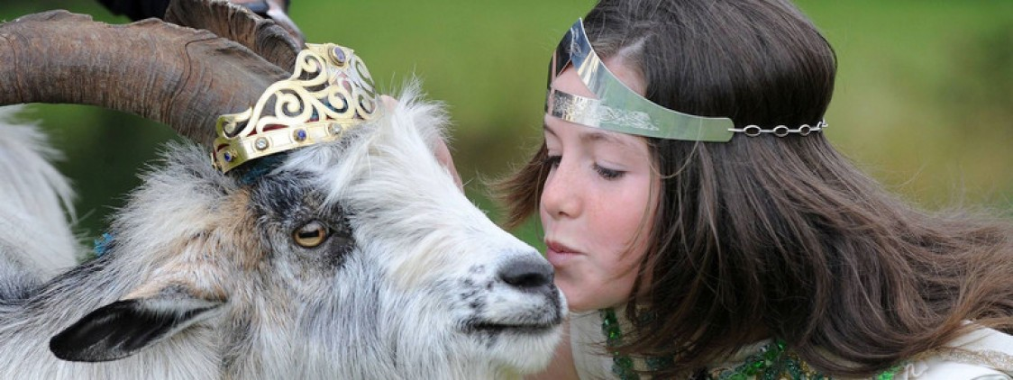 The Goat that would be King: Puck Fair, the oldest fair in Ireland