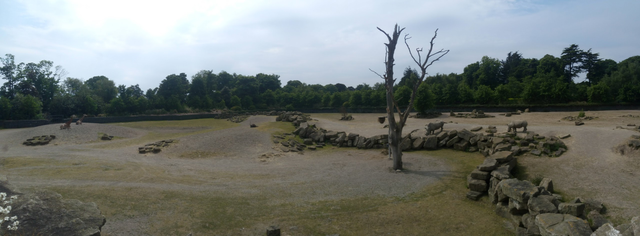 Dublino parco