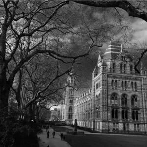 que faire à Londres Que visiterà Londres